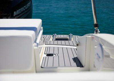 Sea Ray SPX 190 hors bord ponton