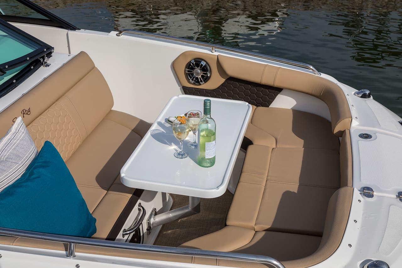 Sea Ray SDX 250 Hors Bord salon