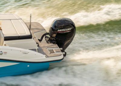 Sea Ray SPX 210 Hors Bord moteur Mercury